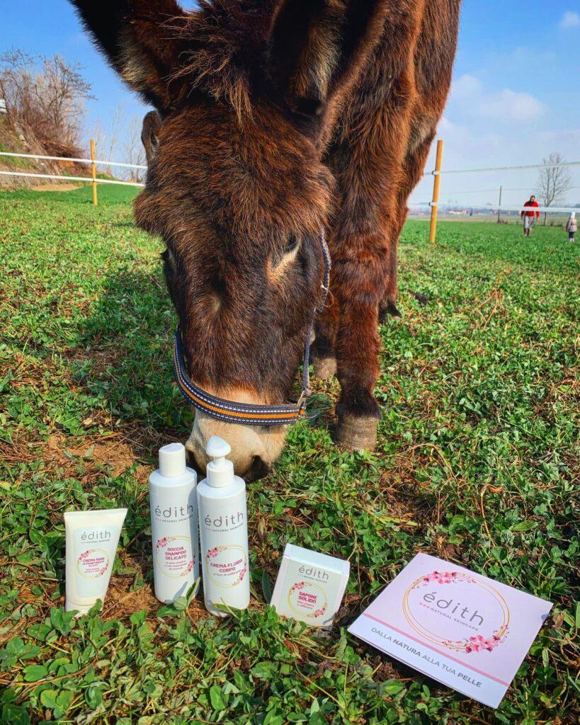 edithcosmesi cosmetici a base di zafferano e latte d'asina
